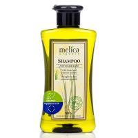 Шампунь для волос от выпадения с экстрактом аира и ржаного солода, 300 мл